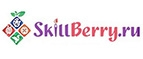 Skillberry